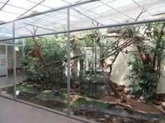 reptile house reptile house LL lotharlinz 80 paludarium reptile house LL reptile house lotharlinz reptile house 80 paludarium reptile house LL