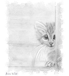 Gattino eseguito a matita al contrario