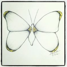 100 Butterflies in 100 Days, Days 14, Medium: Color Pencil