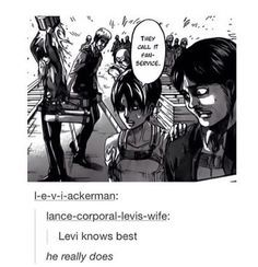 Fourth Wall? Does not exist for Levi Ackerman.