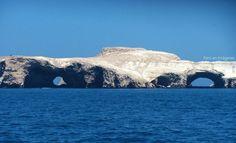 Ballestas Islands, Ica, Peru.