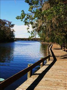 John Chesnut Sr. Park, Lake Tarpon in   Palm Harbor, FL