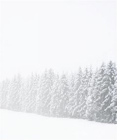 Oh, how I love winter:)
