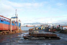 Reykjavík - the harbor area.