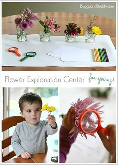 Flower Exploration Center: Hands-On Sensory, Science, and Art for Spring! Perfect for toddlers, preschoolers, and kindergarten! ~ BuggyandBuddy.com