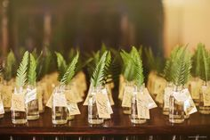 "Ok... I kind of love this idea! Mini sword fern sprigs in mini glass bottles for escort ""cards"". So fun!"