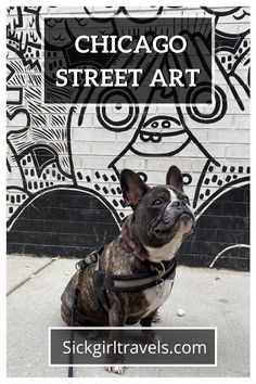 Explore some of the best street art in Chicago. Learn where to find the best murals, graffiti, stencils and public art. Visit Chicago, Chicago Travel, New York City Travel, Travel Usa, Best Street Art, Amazing Street Art, Murals Street Art, Street Art Graffiti, Chicago Murals