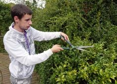 This foundation course will give you a great practical introduction to gardening and landscaping and will provide you with an understanding of the type of work Enfield Middlesex, Gardening Courses, Horticulture, Landscaping, September, College, University, Garden Planning, Yard Landscaping