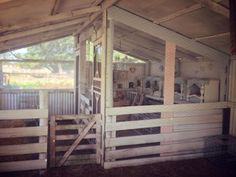 """Owner: Racheal Higginson Lowe Location: Rosedale, Victoria, Australia She says: """"Just waiting on the girls to arrive and enjoy their new pen."""""""