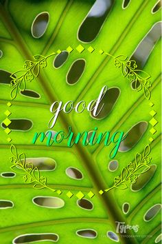 Wednesday Morning, Morning Wish, Beautiful Gardens, Fathers, Typography, Neon Signs, Good Day, Dads, Letterpress