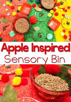 This apple sensory bin is a great way to talk about the parts of an apple with your preschooler. Apple Activities, Autumn Activities For Kids, Sensory Activities, Infant Activities, Sensory Play, Sensory Boxes, Sensory Table, Preschool Learning, Preschool Ideas