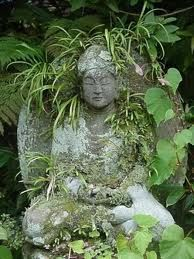 Admiring the plant leaves hugging the Buddha statue accepting it as part of the garden.