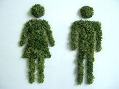 Artist Grows Moss Out Of Common Household Items, Creates Green Living Art Green Plants, Cactus Plants, Graffiti En Mousse, Bathroom Signage, Growing Moss, Moss Plant, Rustic Cafe, Best Bathroom Designs, Fake Grass
