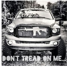 Don't tread on me. Awesome gun grill for a truck. That's country