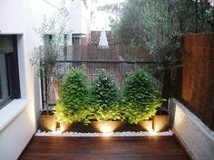 guia de jardin jardn en una terraza o azotea