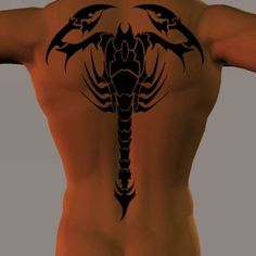 Celtic Chest Scorpion Tattoo - again, beautifully done.