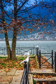 Ioannina lake in autumn, Greece