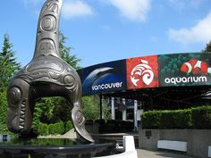 The Vancouver Aquarium and Marine Center. One of the largest in North America.