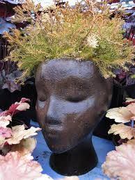 Image result for planter pot head