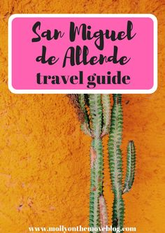 If you're going to this city, be prepared to fall in love! Click the pin for my San Miguel de Allende travel guide