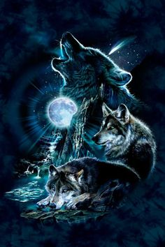 iPod Touch 5 Case iPod Touch 5 Cases Bark At The Moon Wolf Polycarbonate Hard Case Back Cover for iPod Touch 5 White Wolf Photos, Wolf Pictures, Wolf Wallpaper, Animal Wallpaper, Trendy Wallpaper, Anime Wolf, Tier Wolf, Bark At The Moon, Native American Wolf