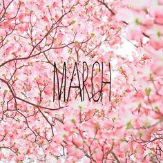 Bem vindo! Que seja florido! Regado de saúde, paz, amor e alegria... abençoado por Deus!