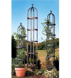since i can't find an arch wide enough, maybe two of these?
