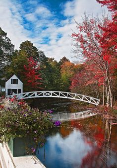 Beautiful arched Bridge over water, trees of many Fall colors. Simply spectacular! Love the colors and the scene!!
