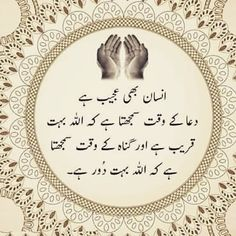 Are you looking to quote Urdu? here you can find the best Urdu quote collection. all quotes in Urdu and you can also see Urdu quote in images. Best Quotes In Urdu, Urdu Quotes, Qoutes, Find Quotes, All Quotes, Islamic Inspirational Quotes, Islamic Quotes, Beautiful Morning Messages, Dua In Urdu