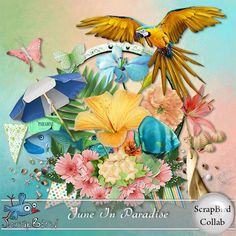 Beautiful scrapbook kit from scrapbird.