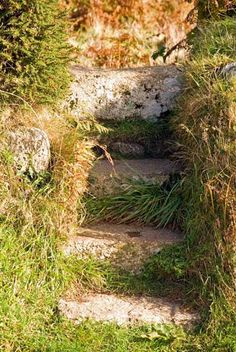 LANYON QUOIT | Cornwall: 'Access to Lanyon Quoit is by these fantastic old stone steps' ✫ღ⊰n