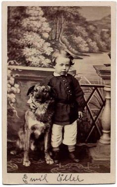 Emil by Libby Hall Dog Photo, via Flickr