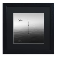 Fly by Moises Levy Framed Photographic Print in Black