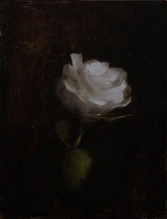 Neil Carroll Original Oil Painting Still Life Rose