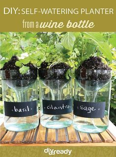 Cool DIY Self-watering Planter using a wine bottle by DIY Projects at https://diyprojects.com/diy-self-watering-planter-from-a-wine-bottle
