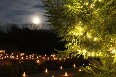Holiday Luminary Walk - Visit Overland Park