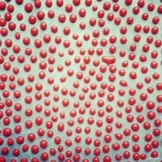 Homemade Sprinkles (a happy accident) i-am-baker-blog