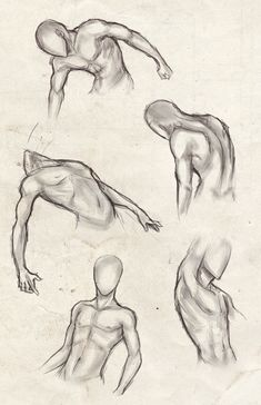 Little bit of male body study for, again, my Dawson portfolio. I really need to wrap this up as quickly as I can You might notice that one or two poses are inspired by 's poses and body studi. Body Sketches, Anatomy Sketches, Anatomy Drawing, Art Drawings Sketches Simple, Anatomy Art, Drawing Body Poses, Body Reference Drawing, Art Reference Poses, Male Torso