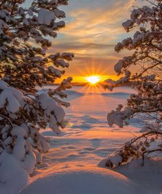 (notitle) The post appeared first on Fotografie. Winter Sunset, Winter Scenery, Winter Snow, Landscape Photography, Nature Photography, Mountain Photography, Photography Tips, Jolie Photo, Winter Landscape