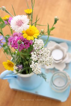 I would be happy to everyday Wake up to wildflowers!