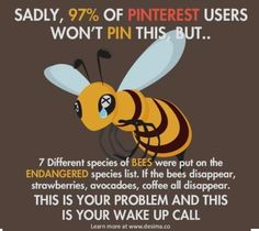 Do your part to save the Bees. - Food Meme - Do your part to save the Bees. The post Do your part to save the Bees. appeared first on Gag Dad. Weird Facts, Fun Facts, Unique Facts, Funny Animals, Cute Animals, Save Our Earth, Wake Up Call, Sad Stories, Save The Bees