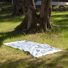 Spa, Picnic Blanket, Outdoor Blanket, Strand, Plants, Families, Vacations, Flora, Plant