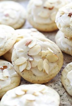 Almond Poppy Seed Cookies-- Part of The Best Poppy Seed Recipes Poppy Seed Cookies, Poppy Seed Bread, Poppy Seed Recipes, Cookie Recipes, Dessert Recipes, Bread Recipes, Lemon Yogurt, Lemon Cookies, Just Desserts