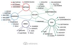 The #sea #life in a #mindmap by #wikibrains