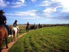 Ruta ecuestre por el Camí de Cavalls - Menorca. Menorca horses. Natural Rute Menorca, Costa, Natural, Animals, Equestrian, Diving, Trekking, Pirates, Adventure