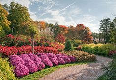 Flower Garden Walk at Longwood in the fall. Lovely Longwood Gardens may be the nation's most prestigious – and wide-ranging – designed landscape. Pierre S. du Pont developed this abundant wonderland.