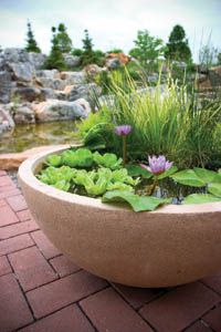 container garden ideas | Container Water Gardening Ideas for Small Spaces