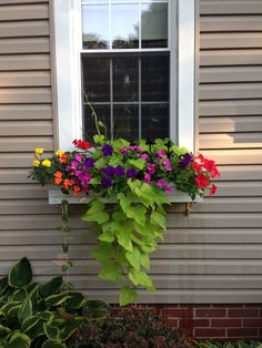 Summer window boxes - My Backyard Now Window Boxes Summer, Window Box Plants, Window Box Flowers, Window Planter Boxes, Flower Boxes, Container Flowers, Container Plants, Container Gardening, Succulent Containers
