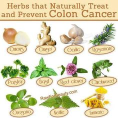 Natural Cures Not Medicine: Natural ways to fight and prevent colon cancer