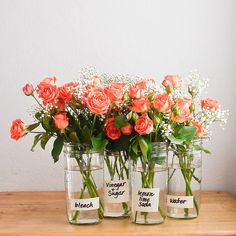 Find out the best way to extend the life of flowers.